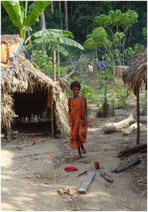 girl in brightly colored sari