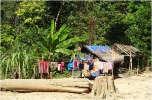 laundry and huts