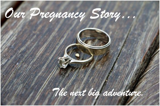Our pregnancy story header