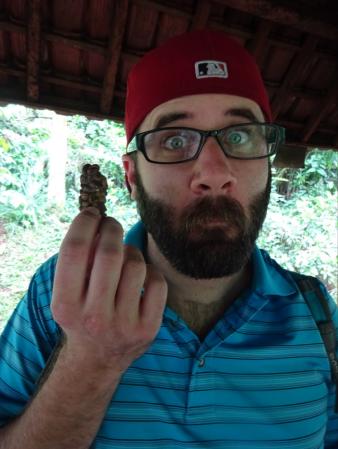 luwak poo