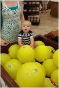 bucees balls